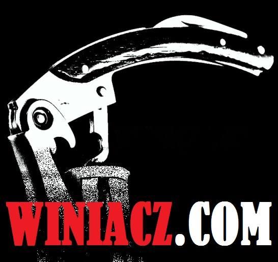winiacz.com